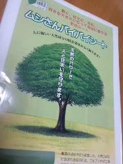 image/2011-09-17T16:55:36-3.jpg